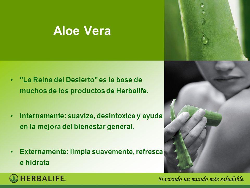 Aloe Vera La Reina del Desierto es la base de muchos de los productos de Herbalife.