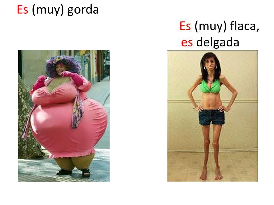 Es (muy) gorda Es (muy) flaca, es delgada