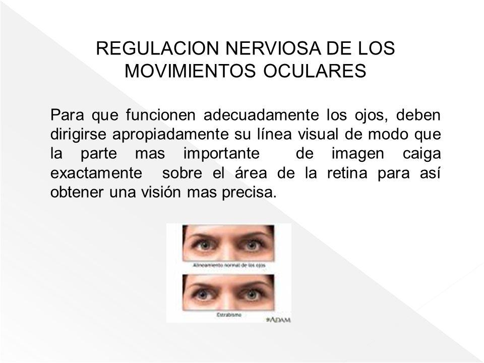 REGULACION NERVIOSA DE LOS MOVIMIENTOS OCULARES