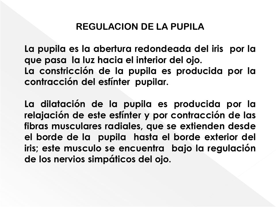 REGULACION DE LA PUPILA