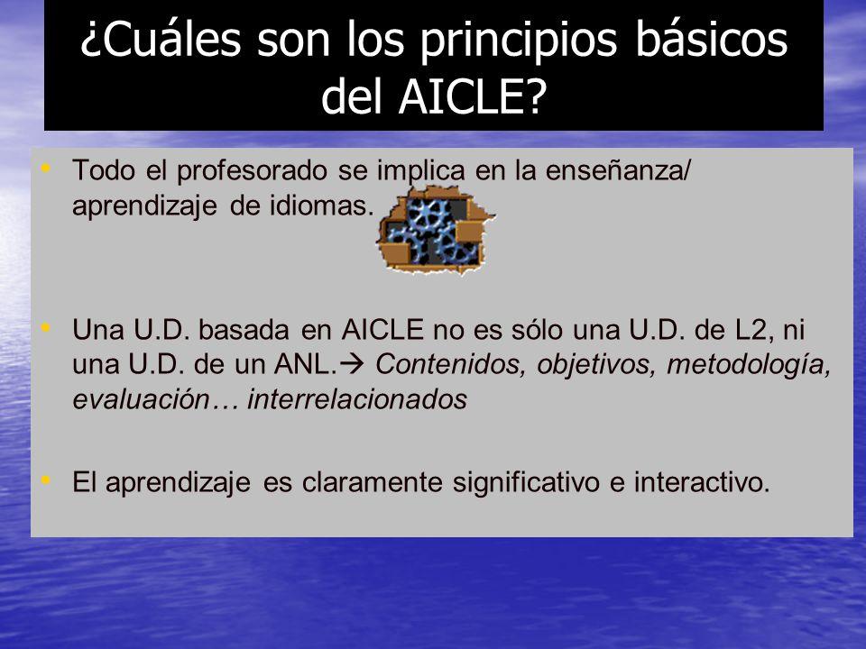 ¿Cuáles son los principios básicos del AICLE