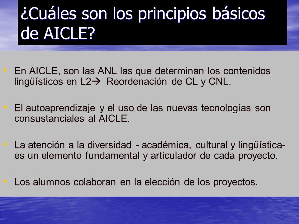 ¿Cuáles son los principios básicos de AICLE