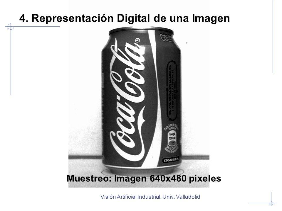 Muestreo: Imagen 640x480 pixeles