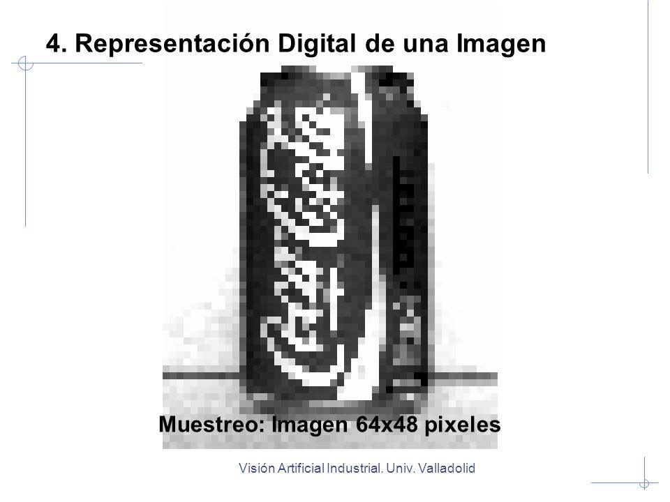 Muestreo: Imagen 64x48 pixeles