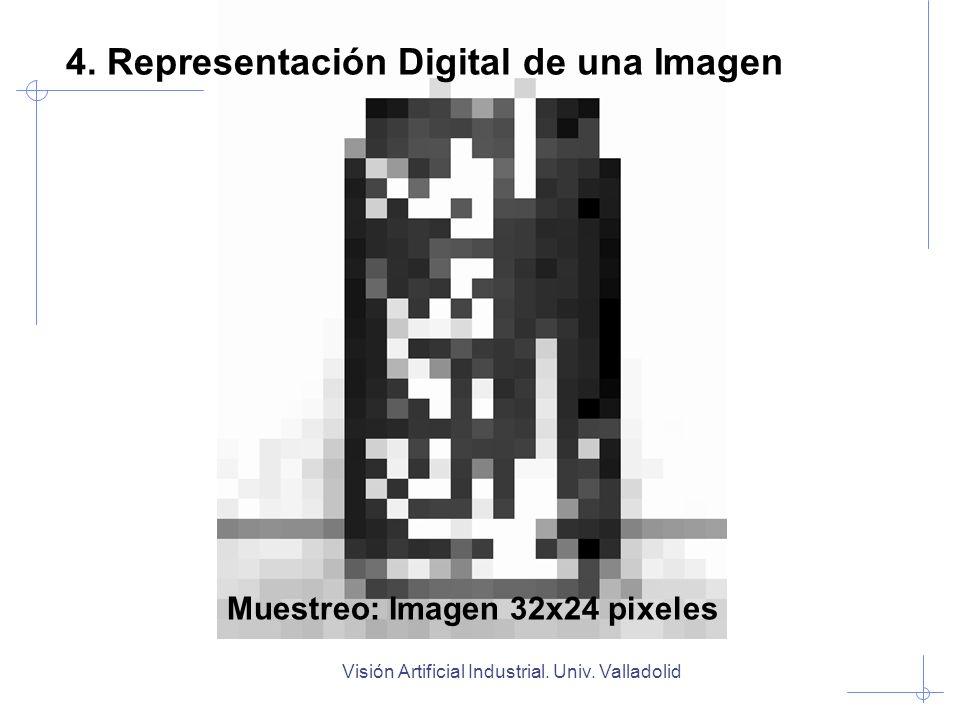 Muestreo: Imagen 32x24 pixeles
