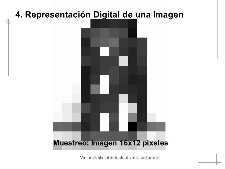 Muestreo: Imagen 16x12 pixeles