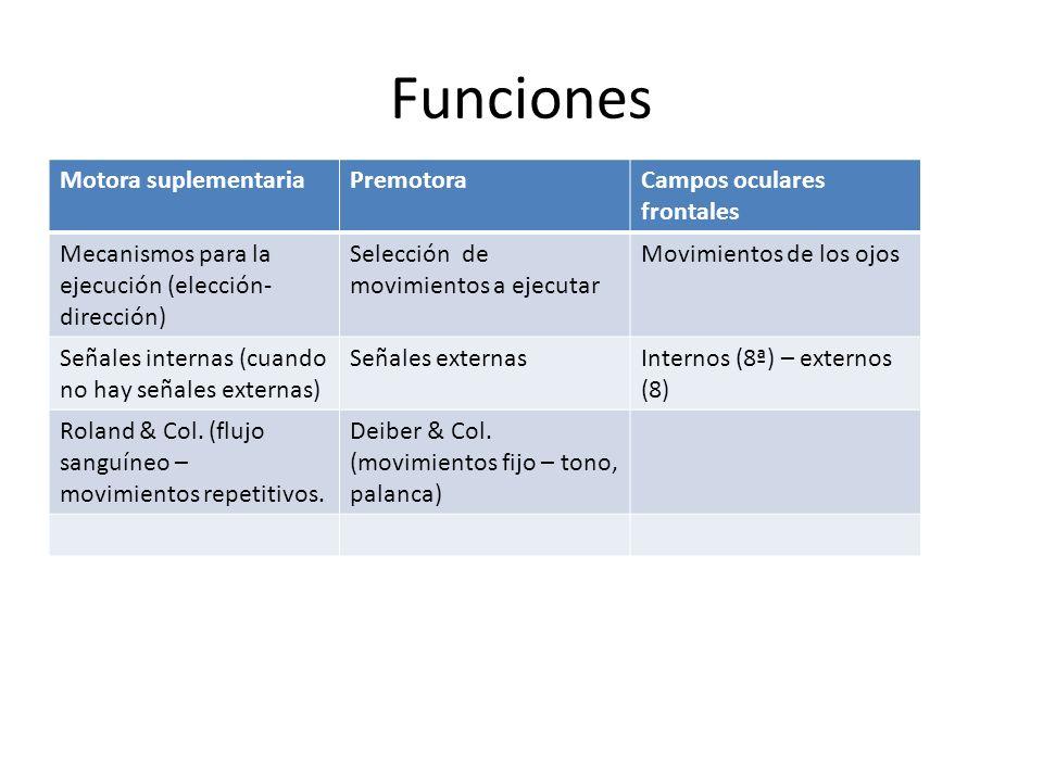 Funciones Motora suplementaria Premotora Campos oculares frontales