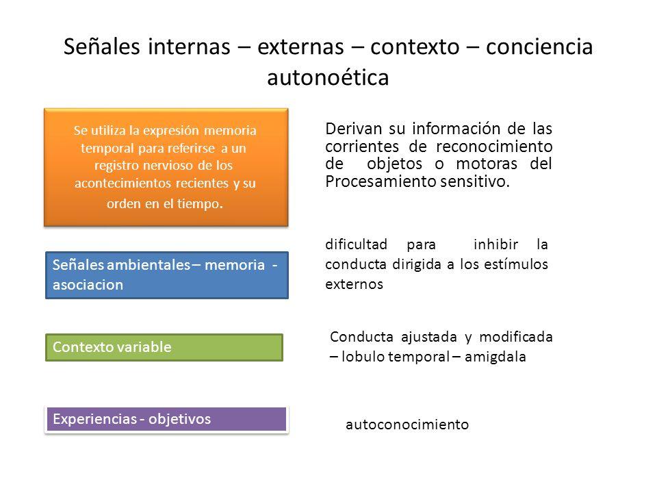 Señales internas – externas – contexto – conciencia autonoética