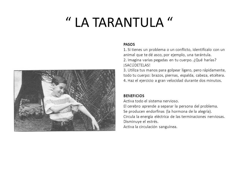 LA TARANTULA