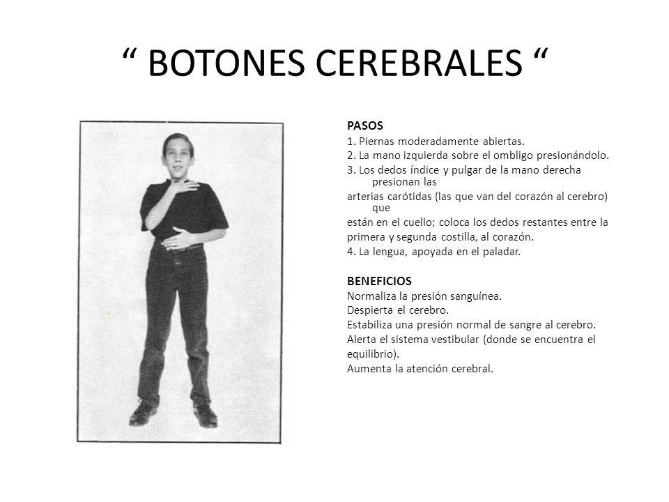 BOTONES CEREBRALES PASOS BENEFICIOS