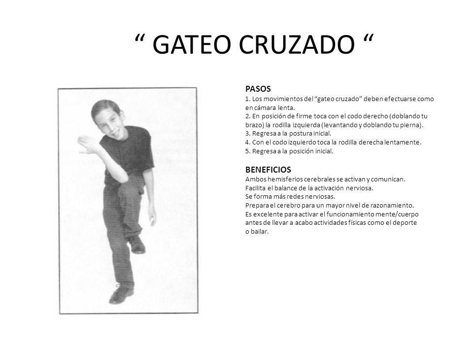 GATEO CRUZADO PASOS BENEFICIOS