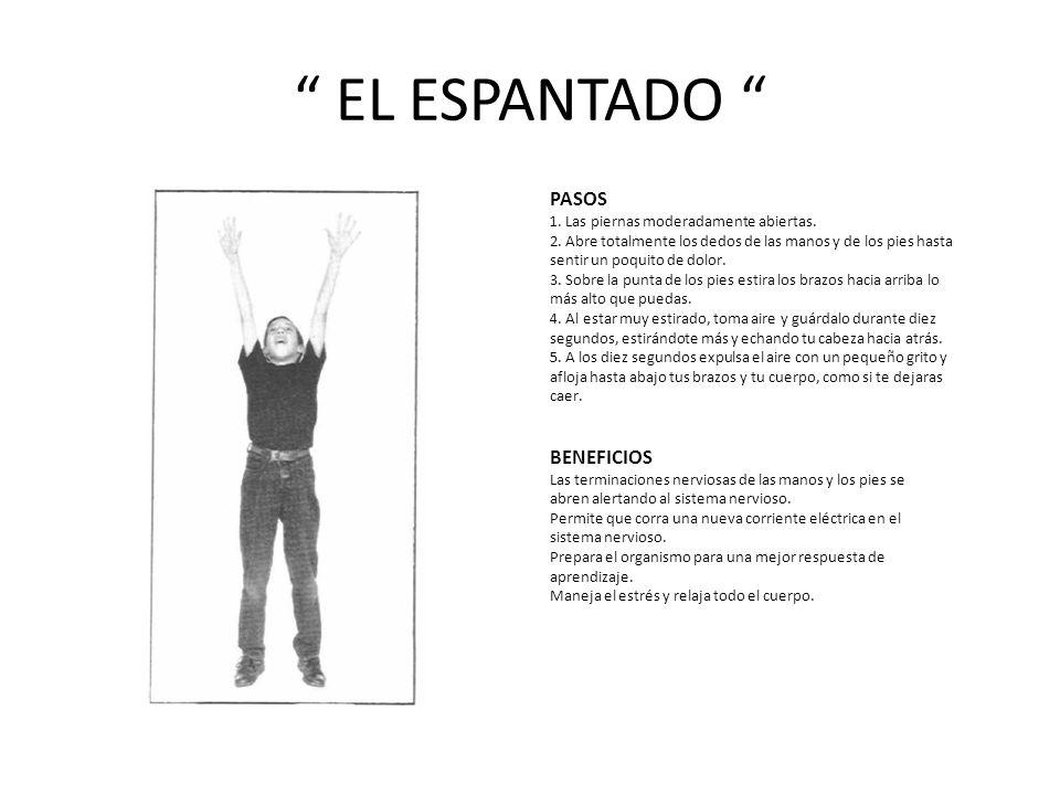 EL ESPANTADO PASOS BENEFICIOS