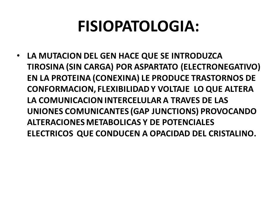 FISIOPATOLOGIA: