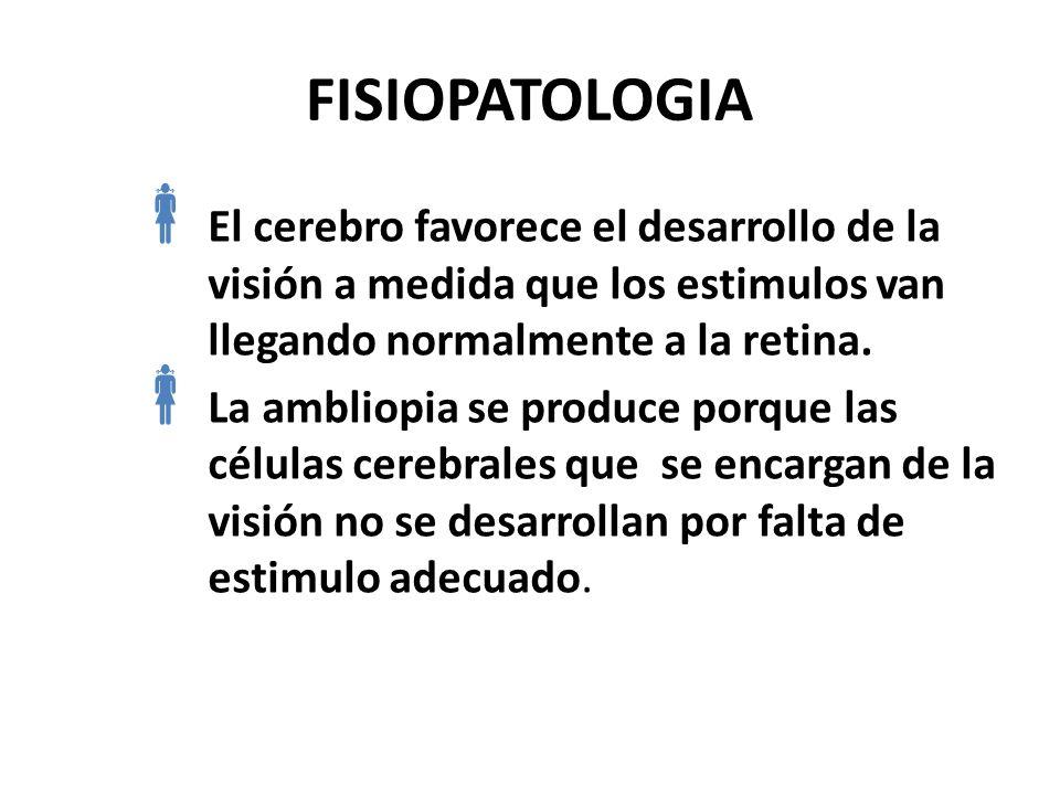 FISIOPATOLOGIA El cerebro favorece el desarrollo de la visión a medida que los estimulos van llegando normalmente a la retina.
