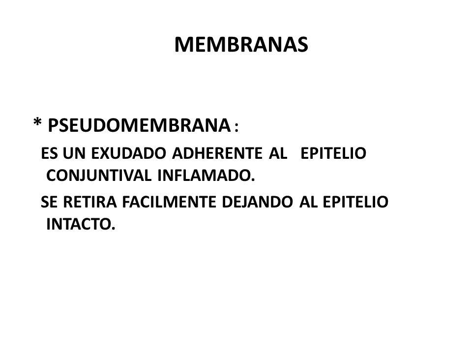 MEMBRANAS * PSEUDOMEMBRANA : ES UN EXUDADO ADHERENTE AL EPITELIO CONJUNTIVAL INFLAMADO.