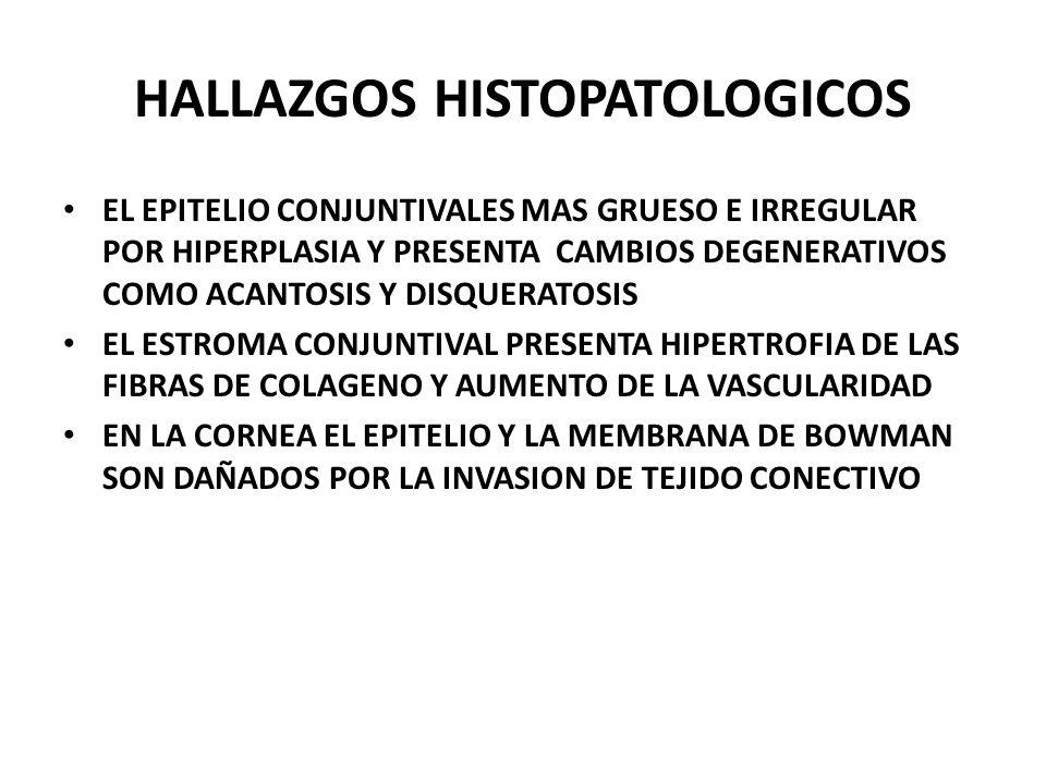 HALLAZGOS HISTOPATOLOGICOS