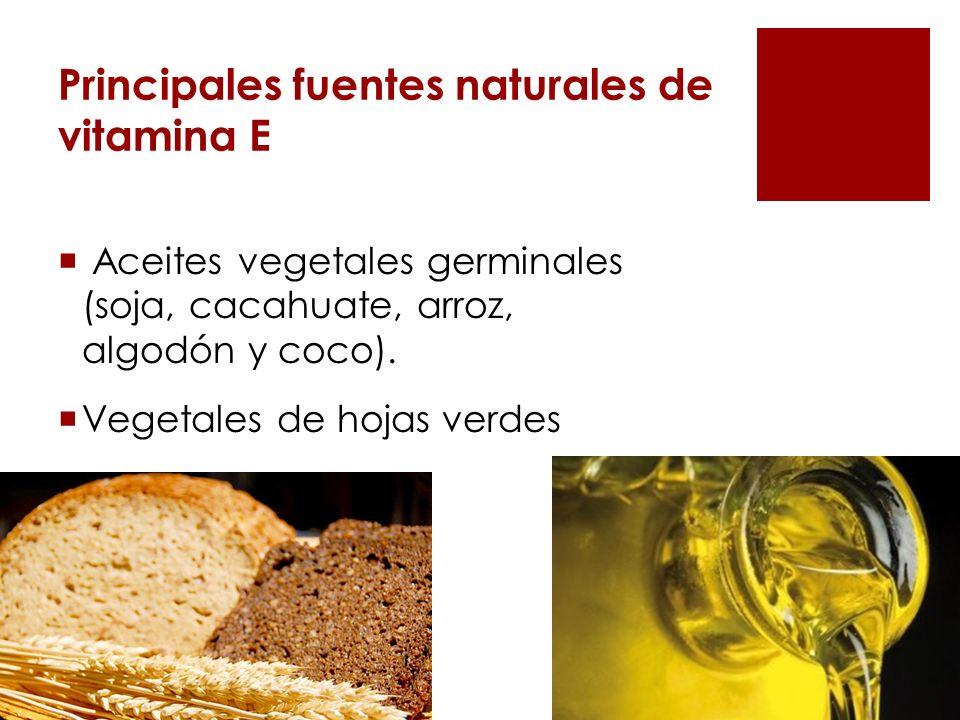 Principales fuentes naturales de vitamina E