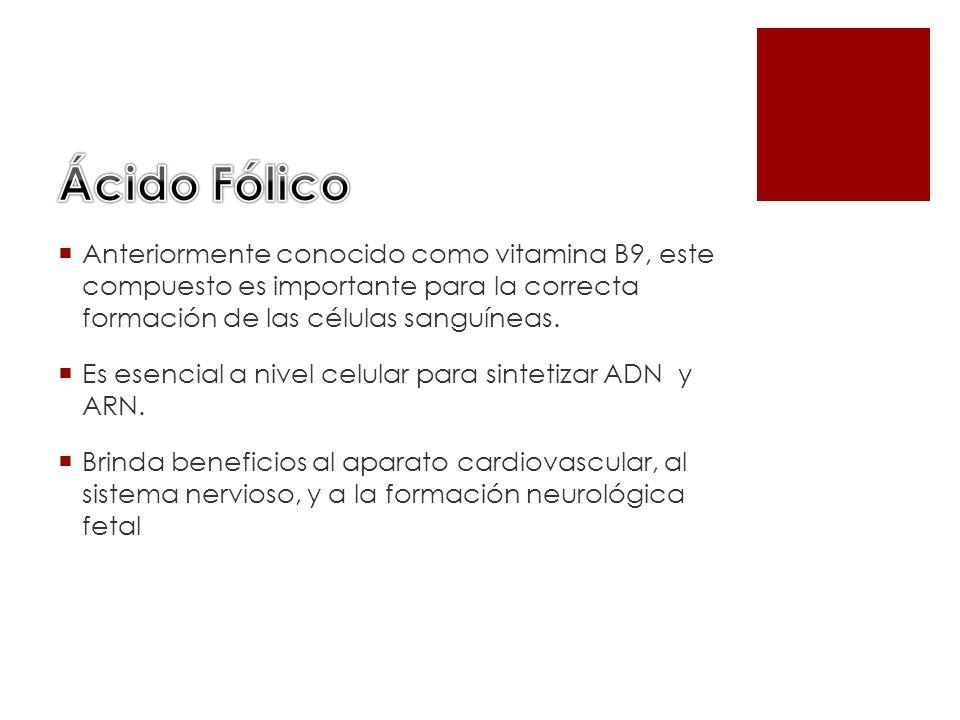 Ácido FólicoAnteriormente conocido como vitamina B9, este compuesto es importante para la correcta formación de las células sanguíneas.
