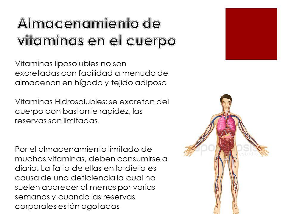 Almacenamiento de vitaminas en el cuerpo