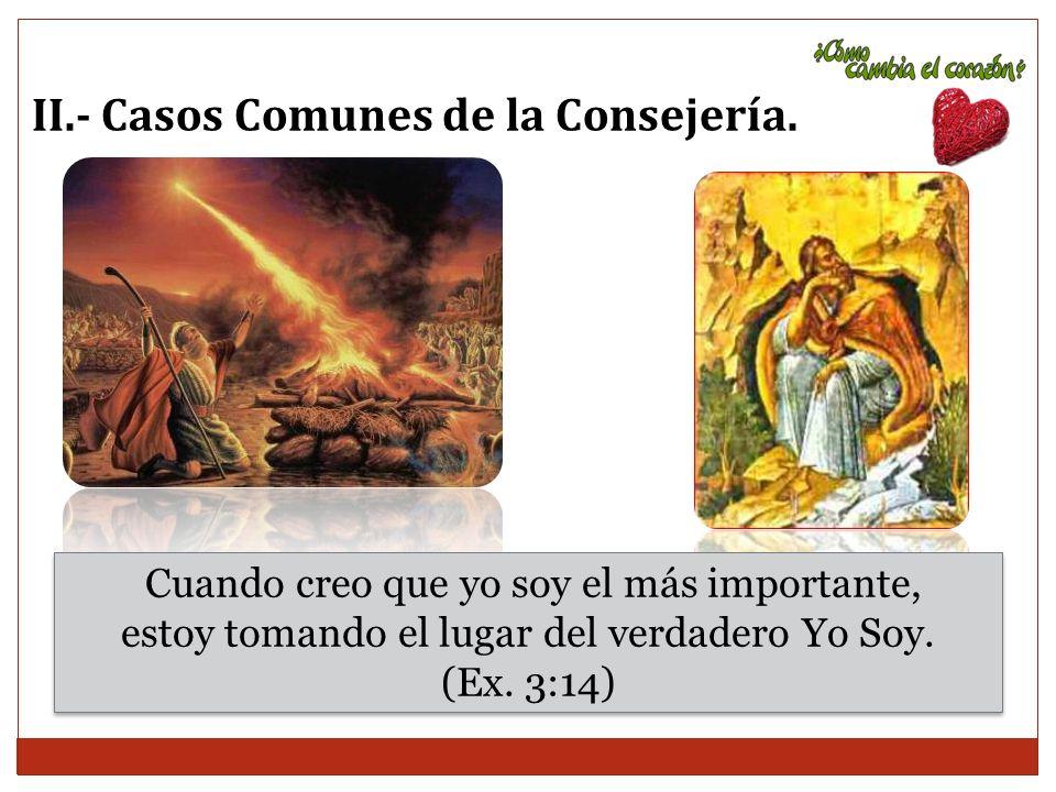 II.- Casos Comunes de la Consejería.