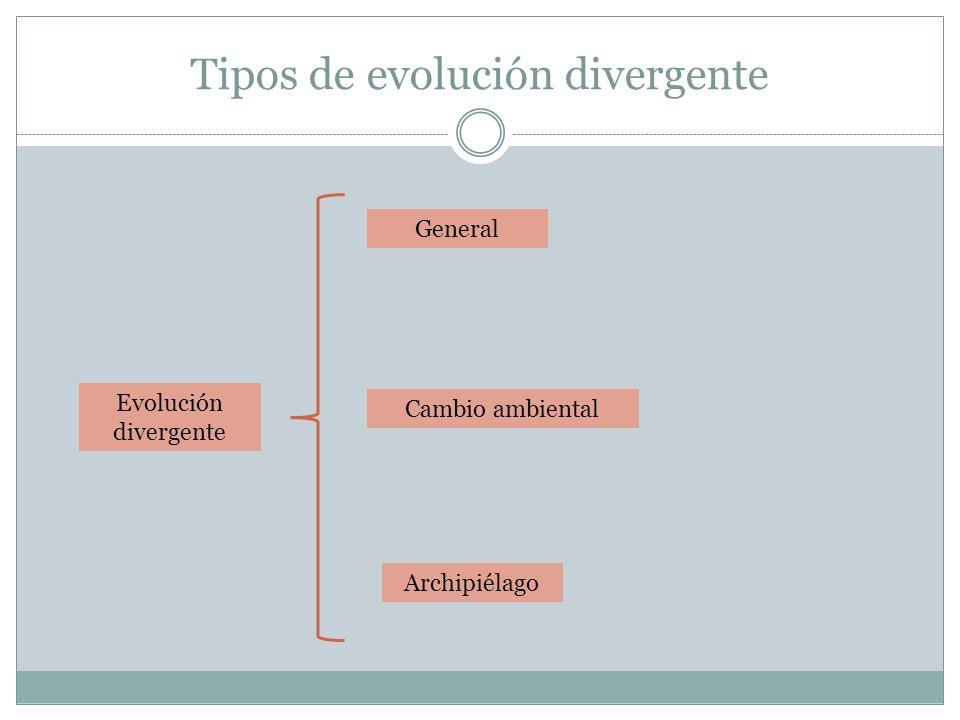 Tipos de evolución divergente