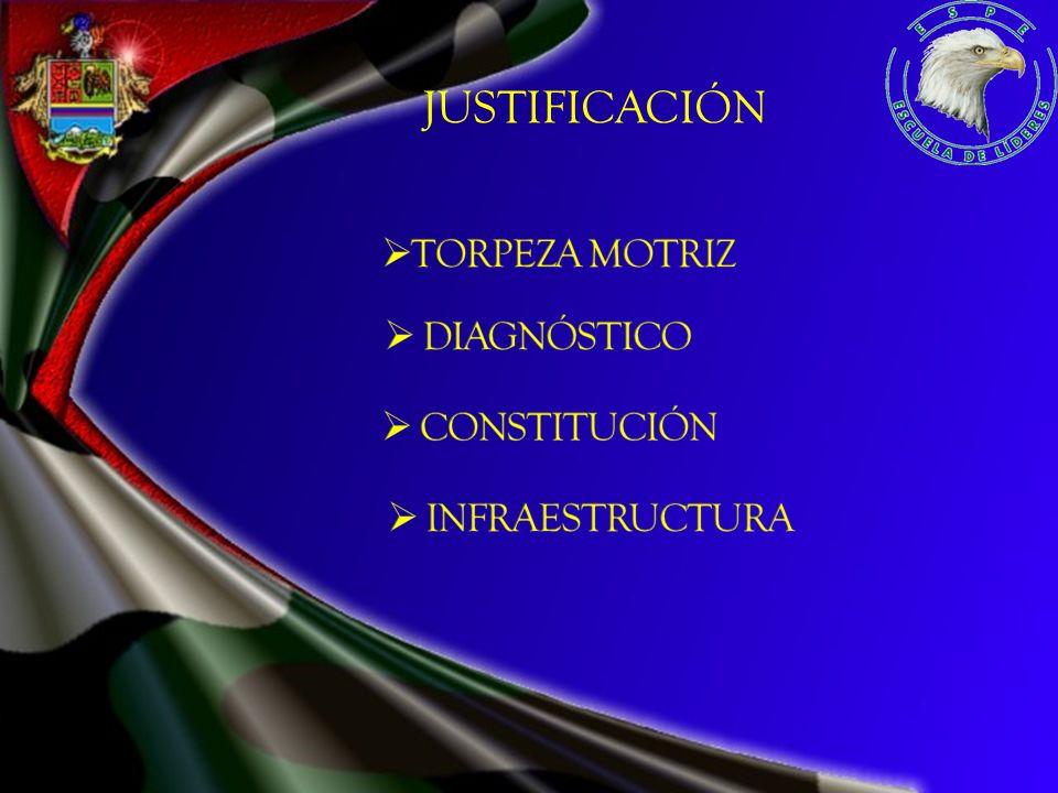 JUSTIFICACIÓN TORPEZA MOTRIZ DIAGNÓSTICO CONSTITUCIÓN INFRAESTRUCTURA