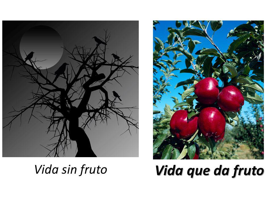 Vida sin fruto Vida que da fruto
