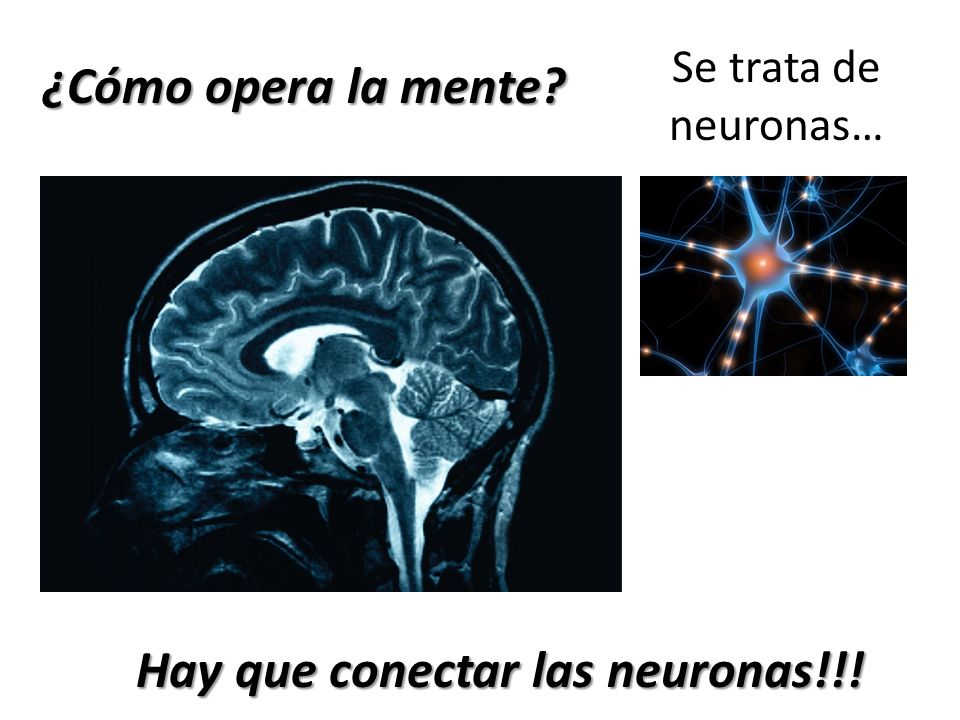 Hay que conectar las neuronas!!!