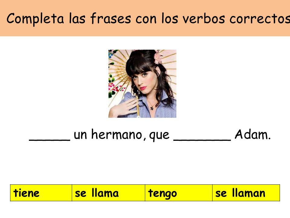 Completa las frases con los verbos correctos