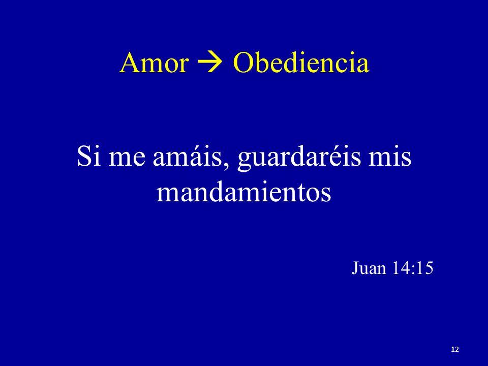 Si me amáis, guardaréis mis mandamientos Juan 14:15
