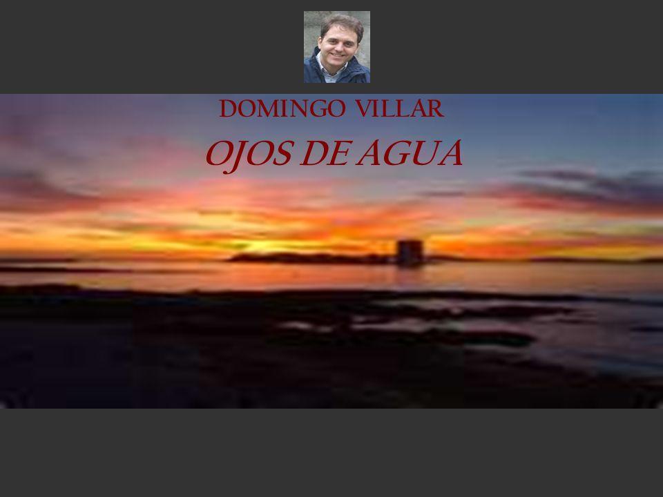 DOMINGO VILLAR OJOS DE AGUA