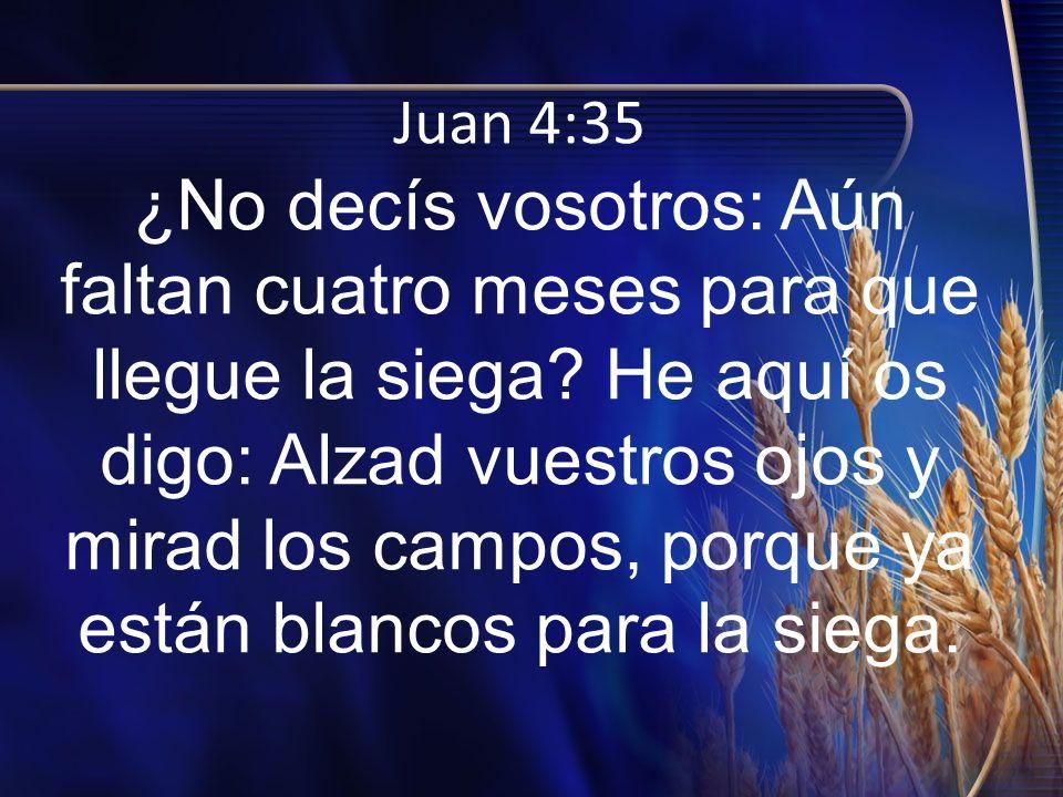 Juan 4:35 ¿No decís vosotros: Aún faltan cuatro meses para que llegue la siega.