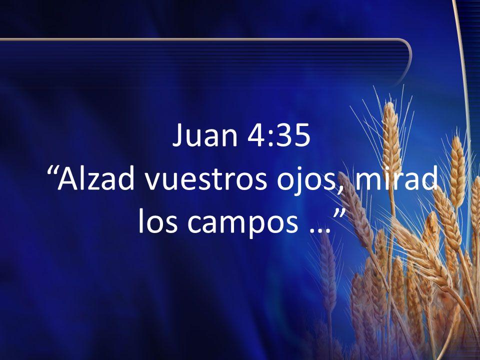 Juan 4:35 Alzad vuestros ojos, mirad los campos …