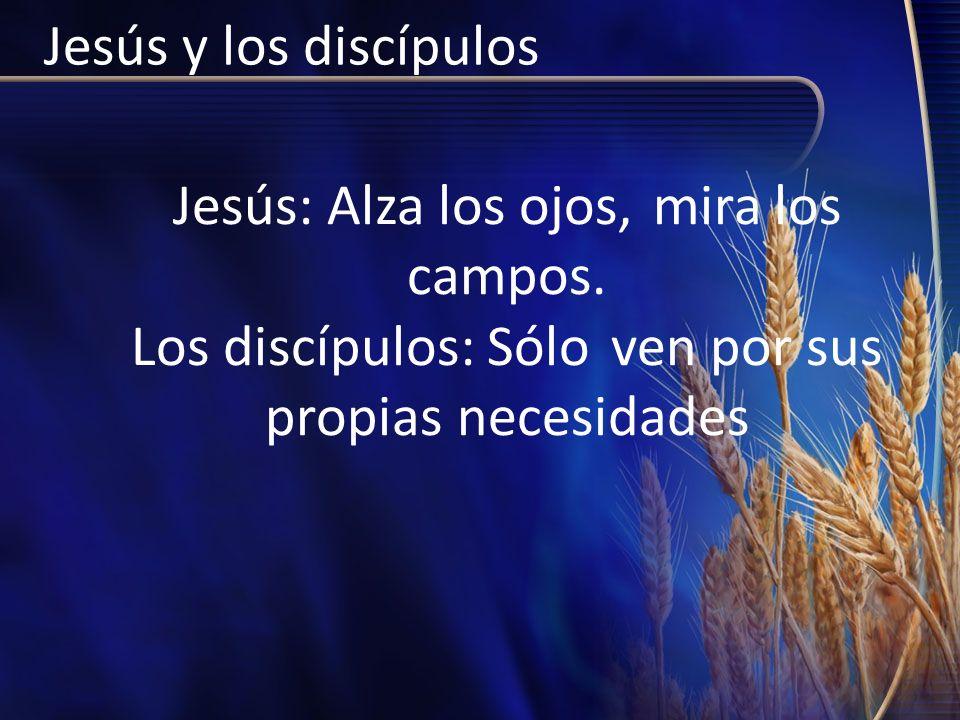 Jesús y los discípulosJesús: Alza los ojos, mira los campos.