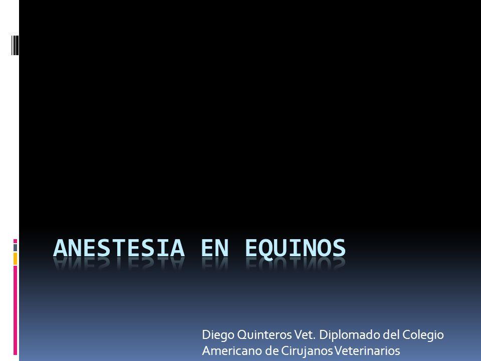 Anestesia en equinos Diego Quinteros Vet. Diplomado del Colegio Americano de Cirujanos Veterinarios