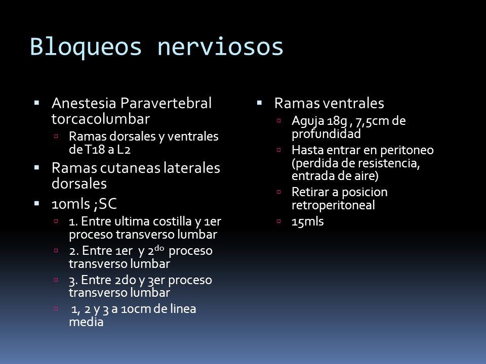 Bloqueos nerviosos Anestesia Paravertebral torcacolumbar