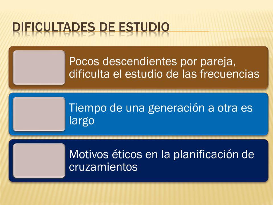 DIFICULTADES DE ESTUDIO