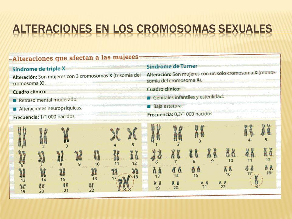 Alteraciones en los cromosomas sexuales