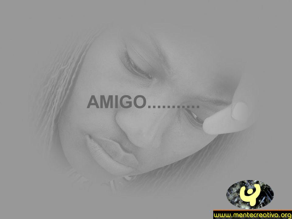 AMIGO...........