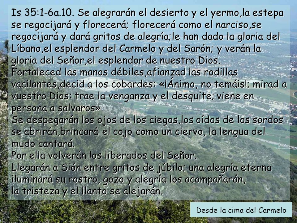 Is 35:1-6a.10. Se alegrarán el desierto y el yermo,la estepa se regocijará y florecerá; florecerá como el narciso,se regocijará y dará gritos de alegría;le han dado la gloria del Líbano,el esplendor del Carmelo y del Sarón; y verán la gloria del Señor,el esplendor de nuestro Dios. Fortaleced las manos débiles,afianzad las rodillas vacilantes,decid a los cobardes: «¡Ánimo, no temáis!; mirad a vuestro Dios: trae la venganza y el desquite; viene en persona a salvaros». Se despegarán los ojos de los ciegos,los oídos de los sordos se abrirán,brincará el cojo como un ciervo, la lengua del mudo cantará. Por ella volverán los liberados del Señor. Llegarán a Sión entre gritos de júbilo; una alegría eterna iluminará su rostro, gozo y alegría los acompañarán, la tristeza y el llanto se alejarán.