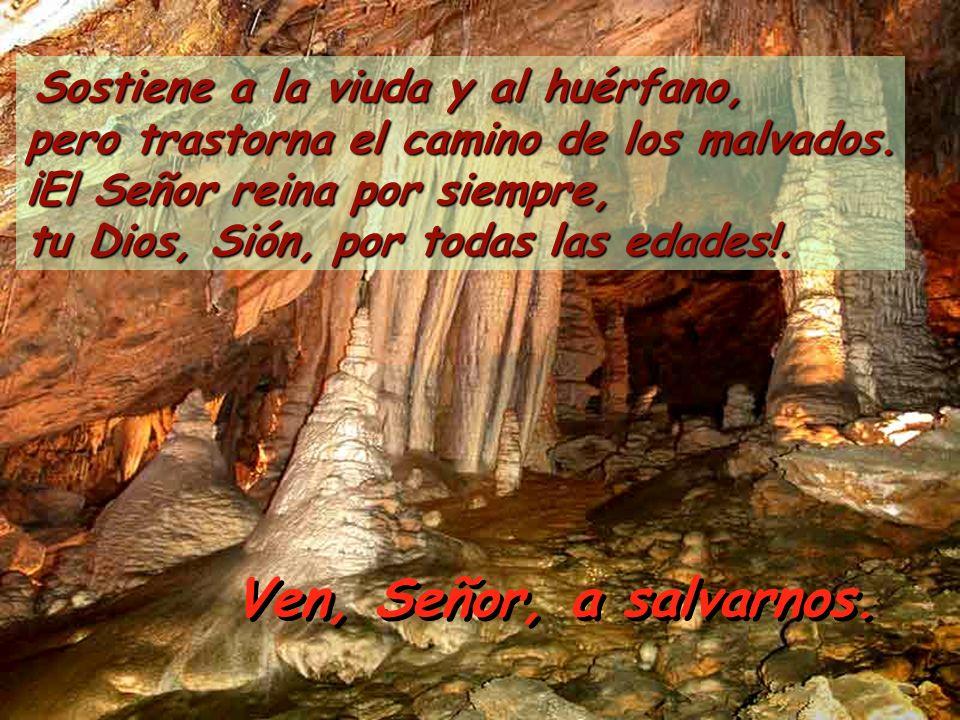 Sostiene a la viuda y al huérfano, pero trastorna el camino de los malvados. ¡El Señor reina por siempre, tu Dios, Sión, por todas las edades!.
