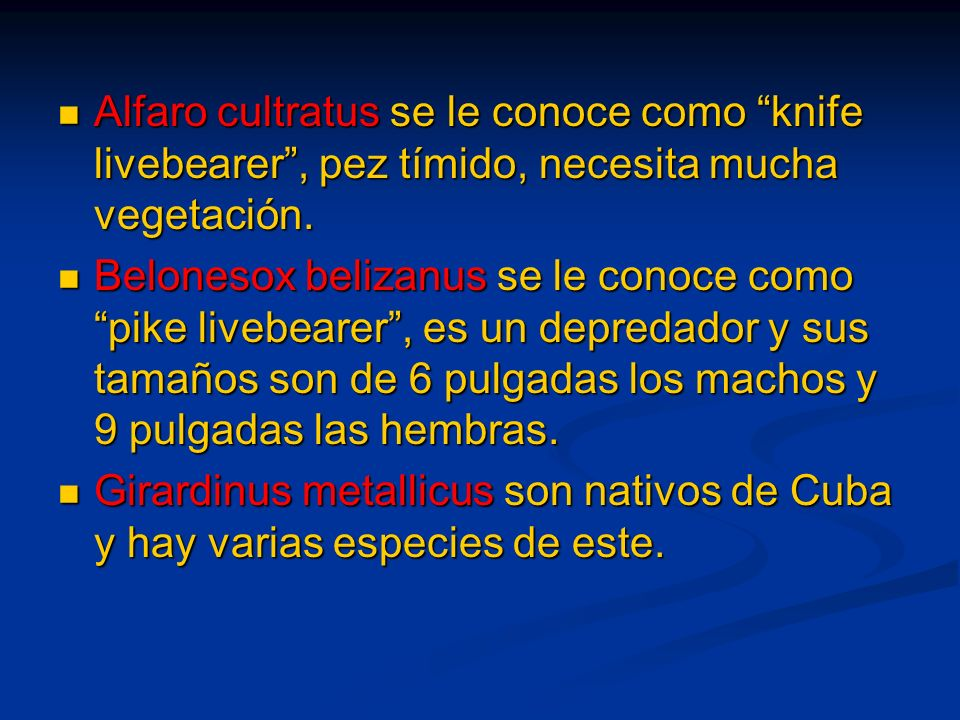 Alfaro cultratus se le conoce como knife livebearer , pez tímido, necesita mucha vegetación.