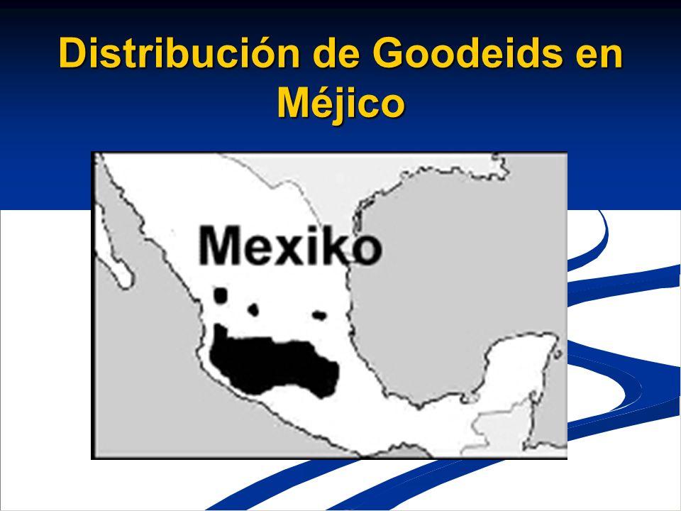 Distribución de Goodeids en Méjico