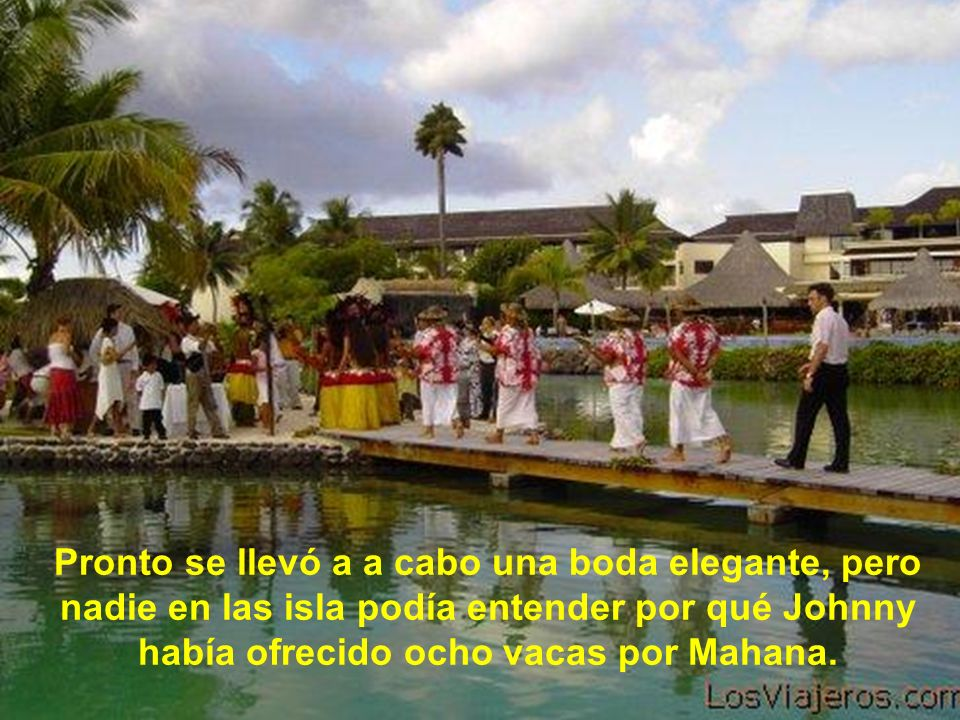 Pronto se llevó a a cabo una boda elegante, pero nadie en las isla podía entender por qué Johnny había ofrecido ocho vacas por Mahana.