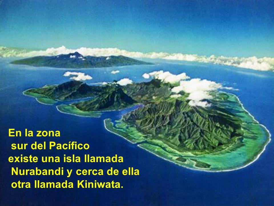 En la zona sur del Pacífico. existe una isla llamada.