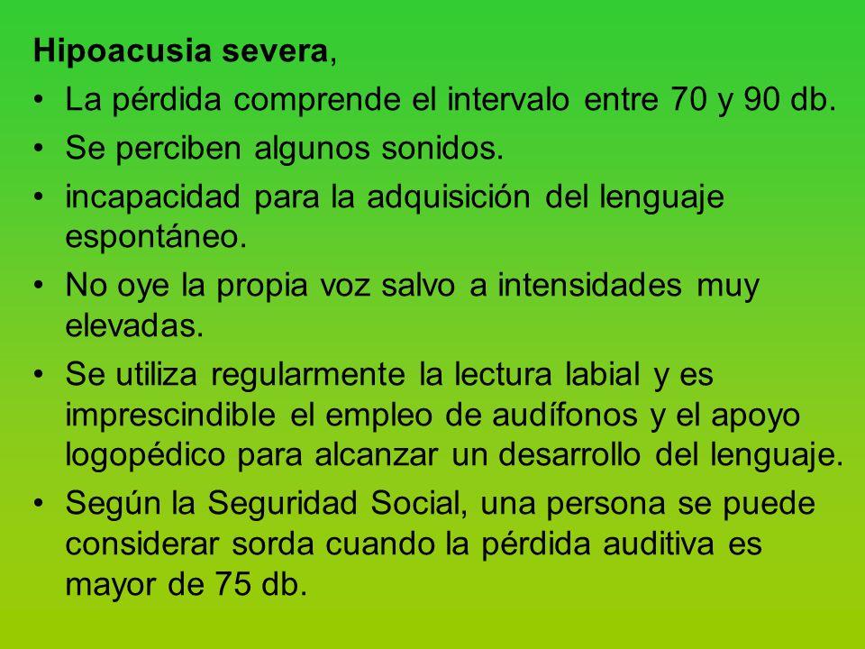 Hipoacusia severa, La pérdida comprende el intervalo entre 70 y 90 db. Se perciben algunos sonidos.