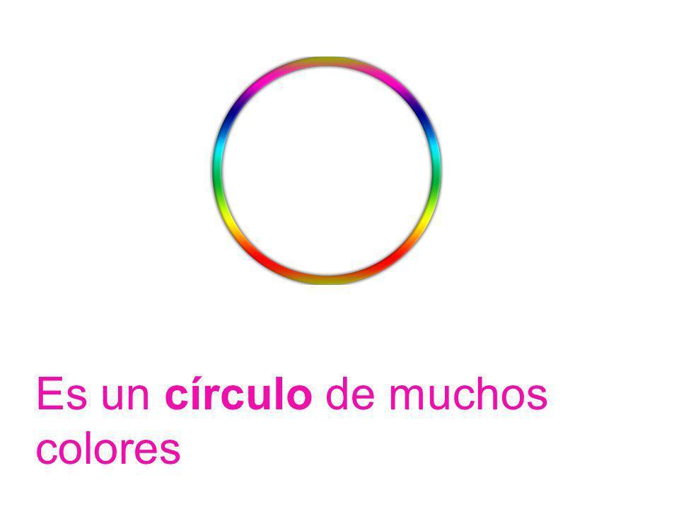 Es un círculo de muchos colores