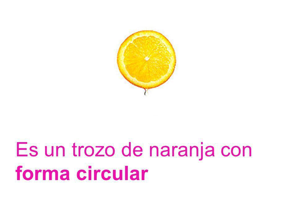 Es un trozo de naranja con forma circular
