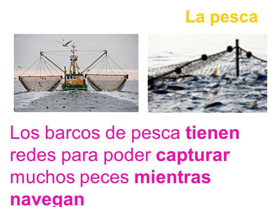 La pesca Los barcos de pesca tienen redes para poder capturar muchos peces mientras navegan