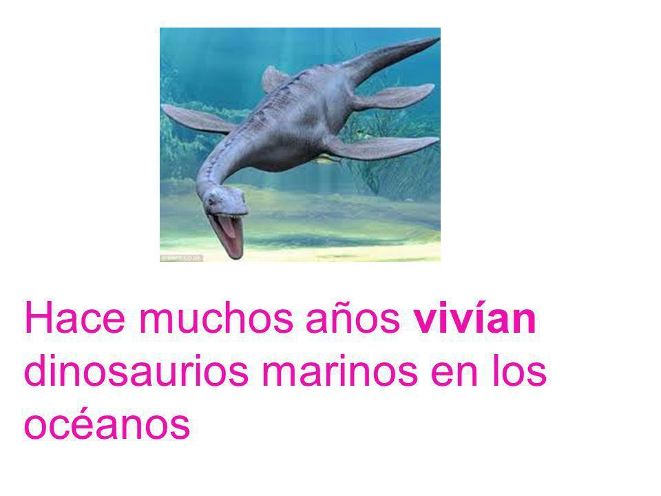 Hace muchos años vivían dinosaurios marinos en los océanos